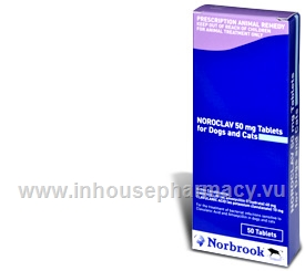Noroclav 50mg 50 Tablets/Pack