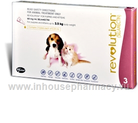 Revolution Pups & Kittens 3 Tubes/Pack