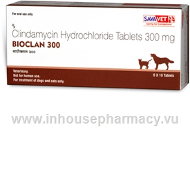 Bioclan (Clindamycin 300mg) 60 Chewable Tablets/Pack