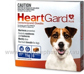 Heartgard Plus Chewables Small Dog 6/Pack