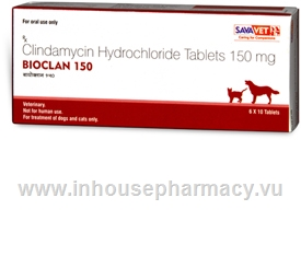 Bioclan (Clindamycin 150mg) 60 Chewable Tablets/Pack